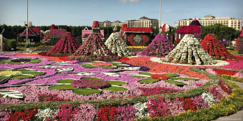 Miracle garden dubaj