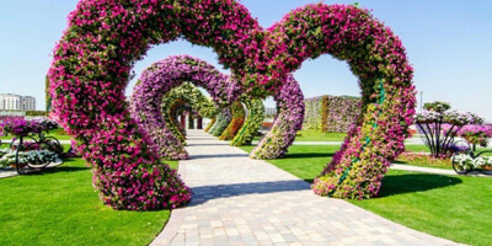 Dubajská zázračná záhrada